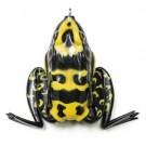 Lunkerhunt Pocket Frog