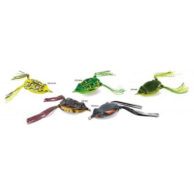 Rapture Dancer Frog