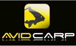 Avid Carp